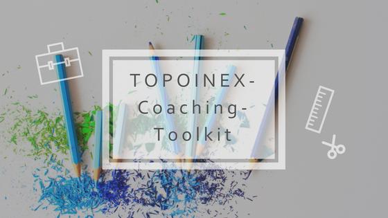Bild zum TOPOINEX in der Praxis: Akzeptanz-Studie 2018